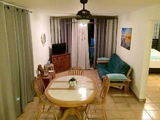 2 BR Apartment for 6 in Isabela- Beach, Surf, Fun! - Isabela vacation rentals