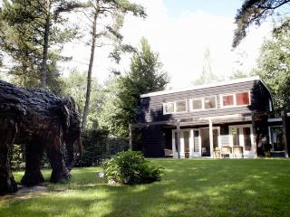 Delightful property in forested park - Moergestel vacation rentals