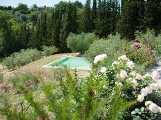 Beautiful Villa with pool close to Rome - Tarano vacation rentals