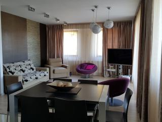 PEARL LUXURY SUITE Brasov - amazing panorama - Brasov vacation rentals