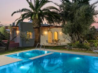 Villa with private pool  in an olive grove - Sfakaki vacation rentals