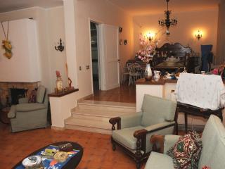 charming villa 200 mt from sea - Marina di Pulsano vacation rentals