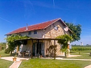 "Farmhouse-vineyard, views, pool, wifi, games-room - ""Grange d' Hibou""-Les Marais - Bergerac vacation rentals"