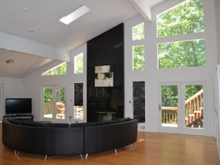 Stream-front Modern 4000 sf, Sauna, Wi-Fi, AC. - Bushkill vacation rentals