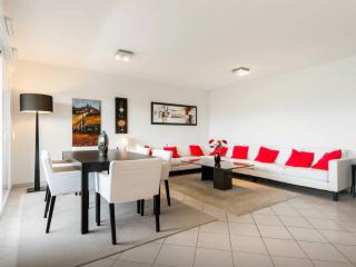 Luxury Modern Flat, 2 room, 2 bthroom, 4-6 persons - Saint-Julien-en-Genevois vacation rentals