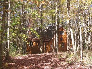 Pointe of Nature Cabins- Ridgeview - Laurelville vacation rentals