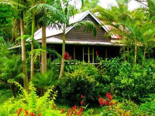 Coco's Cottage in the Byron Bay Hinterland - Bangalow vacation rentals