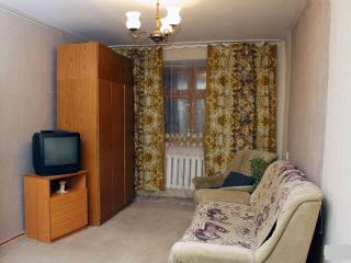 Nice Condo with Housekeeping Included and Television - Barnaul vacation rentals