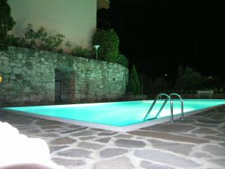 large pool and very large lake view - Malcesine vacation rentals