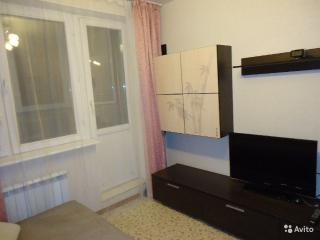 Romantic 1 bedroom Barnaul Condo with Long Term Rentals Allowed (over 1 Month) - Barnaul vacation rentals