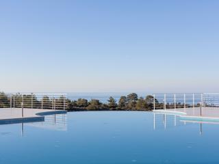 Jenni's Pine Valley - Ayios Amvrosios vacation rentals