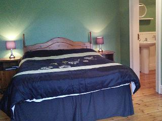 Dundrum House - Double Room - Tassagh vacation rentals