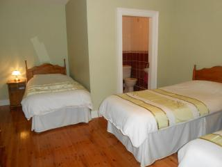 Dundrum House - Triple Room - Tassagh vacation rentals