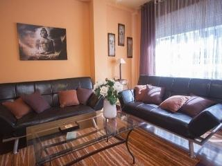 Apartment in Santiago 100698 - A Coruna Province vacation rentals