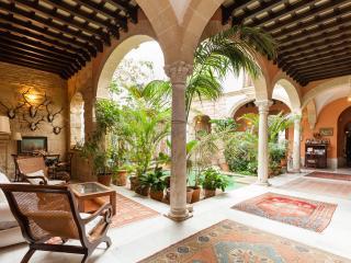 Old XVIII Century Palace - Jerez De La Frontera vacation rentals