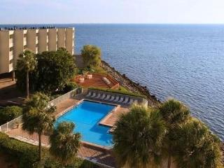 On waters of Tampa Bay 3 mi from Tampa Int Airport - Tampa vacation rentals