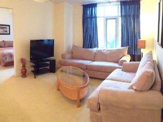 Nice Condo with Internet Access and Satellite Or Cable TV - Ottawa vacation rentals