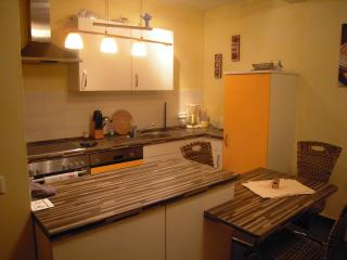 1 bedroom Apartment with Washing Machine in Koblenz - Koblenz vacation rentals