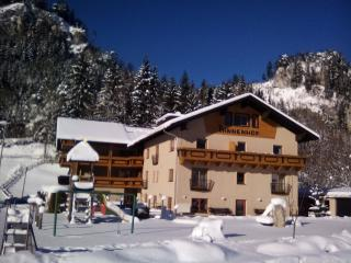 Nice Resort with Internet Access and Safe - Wängle vacation rentals