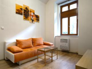 Modern flat close to center&FREE public transport - Prague vacation rentals