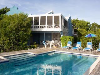 Blue Villa - Superb For Snorkelling 3/4BR - Turtle Cove vacation rentals