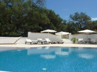 Villa Linakis with pool - your own private oasis! - Arillas vacation rentals