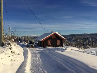 Nice Cabin with Television and Mountain Views - Nesbyen vacation rentals