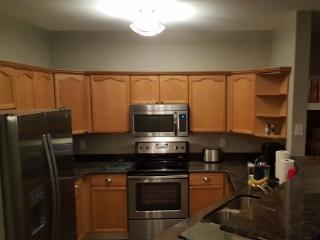 2 bedroom Condo with Internet Access in Denver - Denver vacation rentals