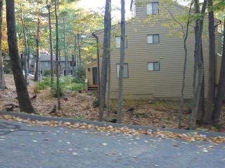 1 bedroom Condo with Grill in Torrington - Torrington vacation rentals