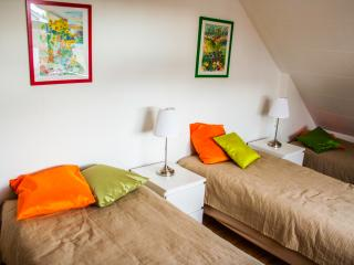 Great Apartment Close to City Center - Reykjavik vacation rentals