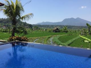 Beautiful Villa with Internet Access and Wireless Internet - Ababi vacation rentals