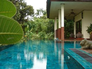 Gecko Villa  Full Board rural Thai pool villa - Udon Thani vacation rentals