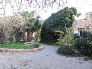 Quietly located Finca in Salinas for 4-12 guests - Ses Salines vacation rentals