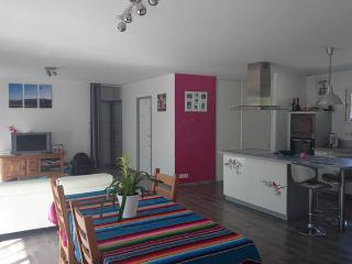 Maison neuve proche de l'océan - Soustons vacation rentals