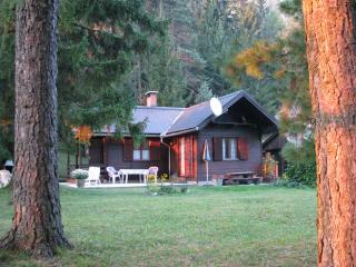 Nice House with Internet Access and Television - Gozd Martuljek vacation rentals