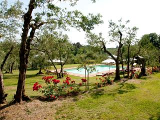 Honeymoon apartment in country villa - San Casciano in Val di Pesa vacation rentals