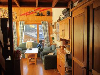 Les Gets Le Grand Paradis - Les Gets vacation rentals