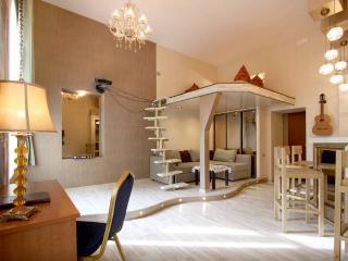 Duplex Apartment - Saint Petersburg vacation rentals