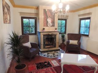 VİLLA İSTANBUL BUYUKCEKMECE Villa İstanblue - Istanbul vacation rentals
