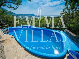 Beautiful Villa with Internet Access and Dishwasher - Ischia vacation rentals