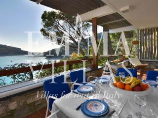 Nice 4 bedroom Lerici Villa with Internet Access - Lerici vacation rentals