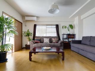 3bdr Family Maisonette 200m from JR 9pp - Osaka vacation rentals