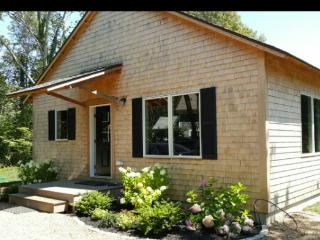 Vineyard Santo's Crib  3 bedroom contemporary home - Vineyard Haven vacation rentals