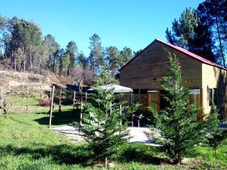 Serra da Estrela - Casa das Marcas - Oliveira do Hospital vacation rentals