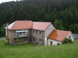 3 bedroom Apartment with Internet Access in Wangenbourg - Wangenbourg vacation rentals