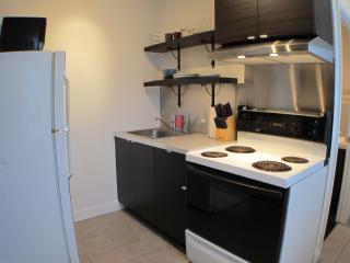 The Orchid - 1 Bed & 1 Bath - Montreal vacation rentals