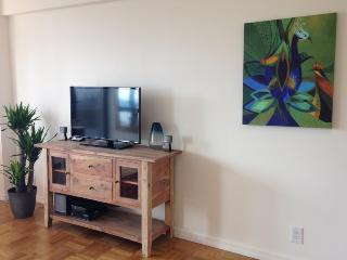 Centrally located 1 bedroom apartment - New York City vacation rentals