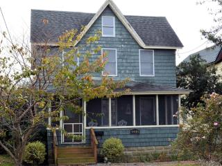 Nice 3 bedroom House in Chincoteague Island - Chincoteague Island vacation rentals