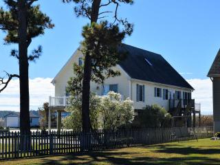 Wild Heron - Chincoteague Island vacation rentals