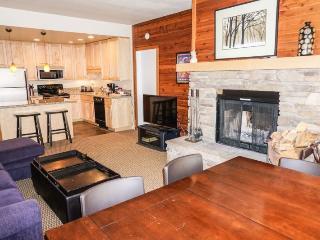 Sun Meadows 1 - 102 Luxury condo - Kirkwood vacation rentals